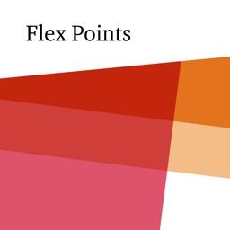 flexPoints