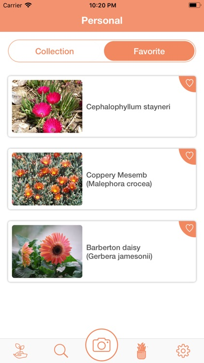 PlantDetect - Plant Identifier screenshot-6