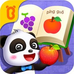 Panda  Common Items