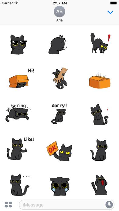 Animated Grumpy Black Cat screenshot 2