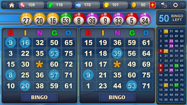 Bingo!!