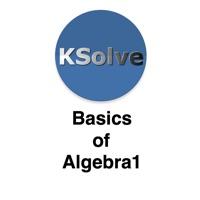 Codes for Basics Of Algebra 1 Hack