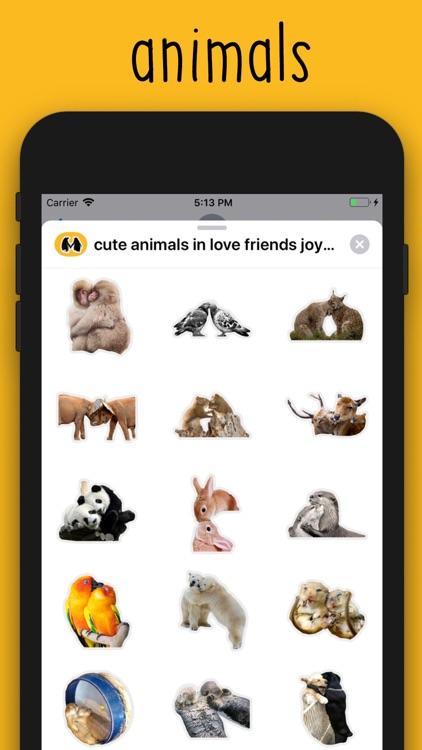 cute animals in love part 1