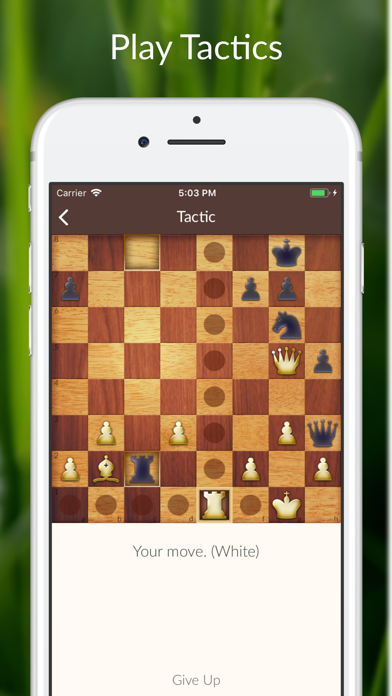 Chess Tactics and Lessons free Resources hack