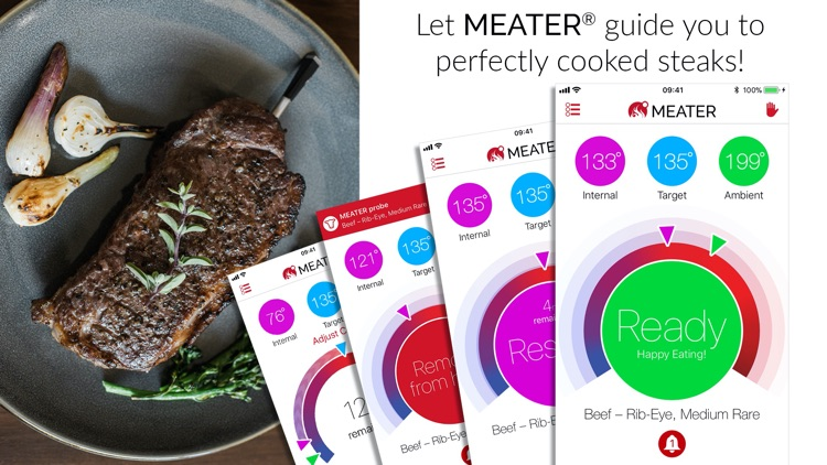 MEATER® Smart Meat Thermometer