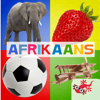SMART GECKO SOFTWARE DEVELOPMENT (PTY) LTD - 500+ Afrikaans flitskaarte artwork