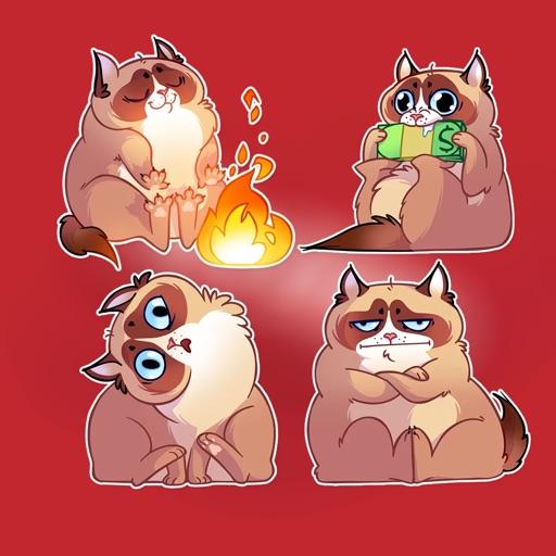 Kooky Cat Stickers HD