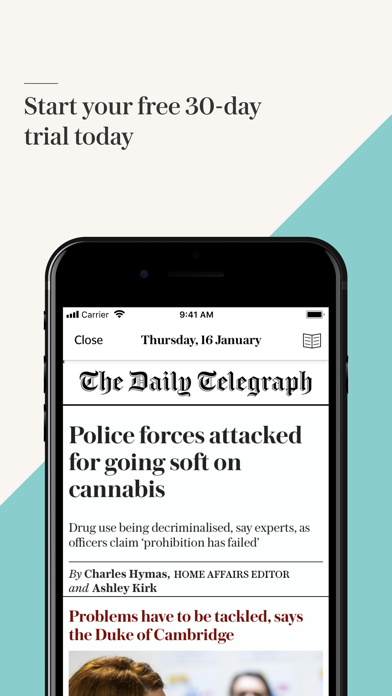 Telegraph Newspaper Edition UK Screenshot