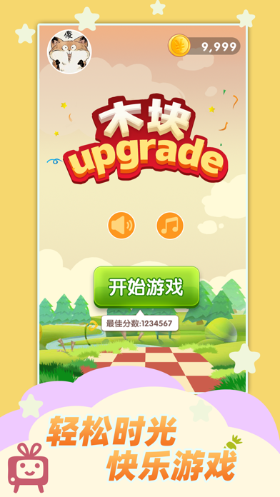 木块Upgrade Screenshot 1