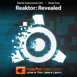 Revealed Course For Reaktor