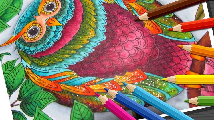 Birds Mandala Coloring - Relax
