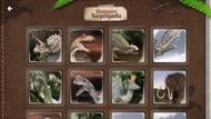 SND Dinosaur AR iphone images