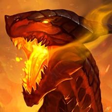 Activities of Dragon Champions
