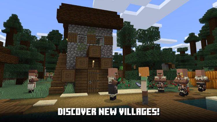 Minecraft screenshot-8