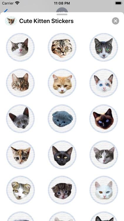 Cute Kitten - Stickers