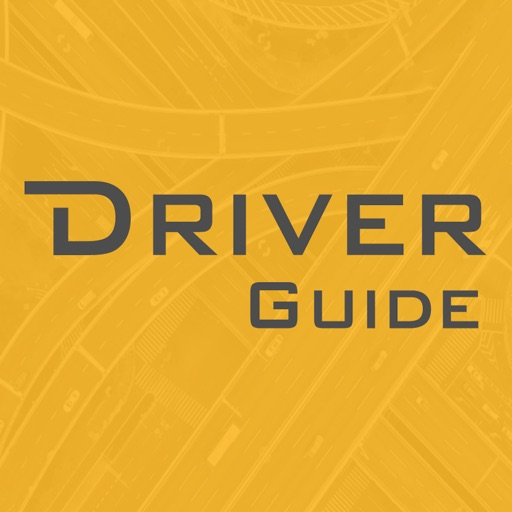 Driver Guide System