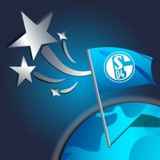 Activities of Schalke Quest