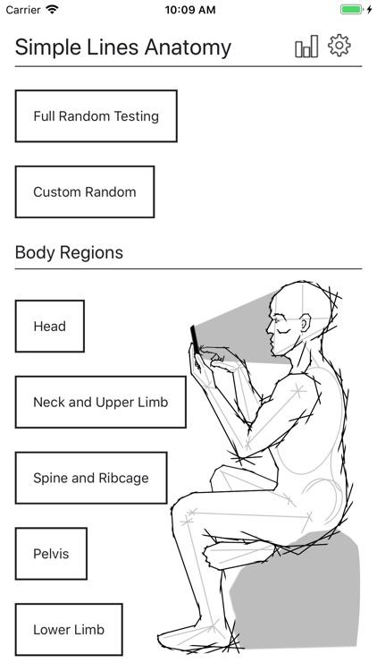 Simple Lines Anatomy