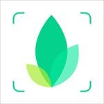 识物-动植物识别神器