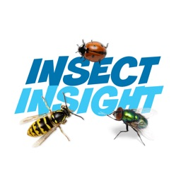 Insect Insight (ANIMATED)