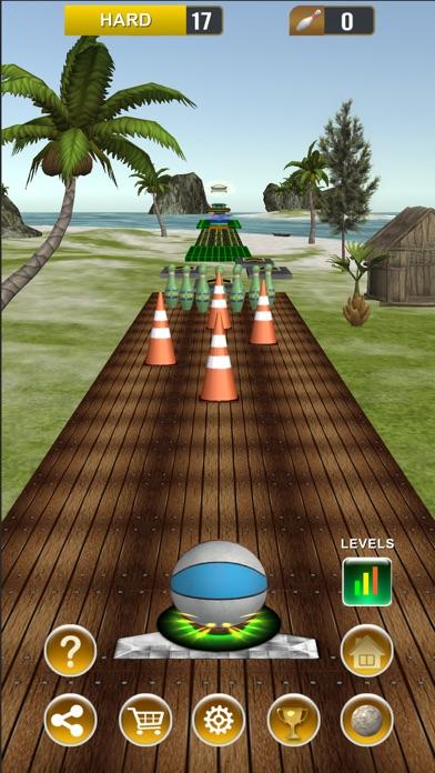 Endless Bowling Paradise screenshot 8