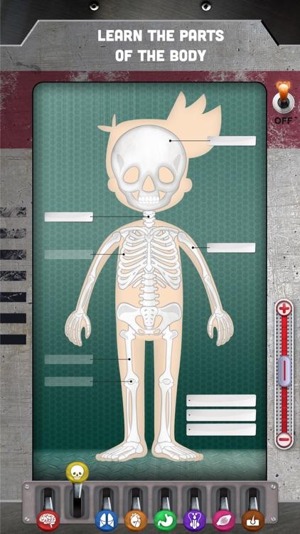 How does The Human Body Work? screenshot-3