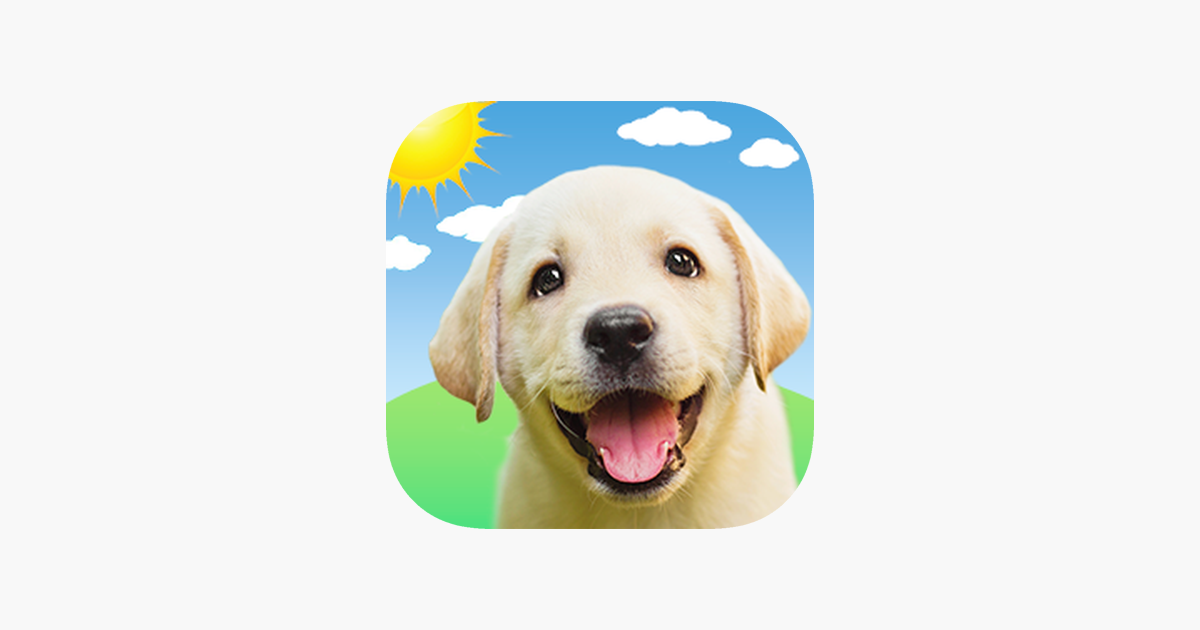 Weather Puppy Forecast Dogs On The App Store