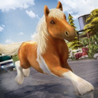 Codes for My Pony Horse Ride Adventure Hack