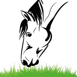 Equine Nutrition Calculator