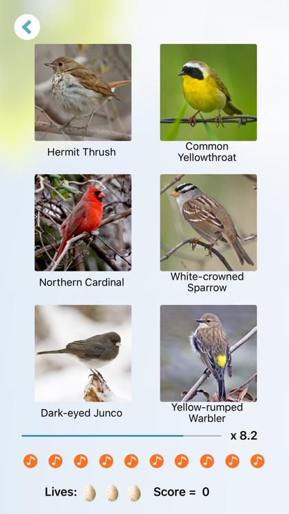 Chirp! Bird Songs & Calls USA screenshot-7