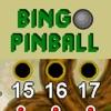 Bingo Pinball Dragon 宾果弹球龙