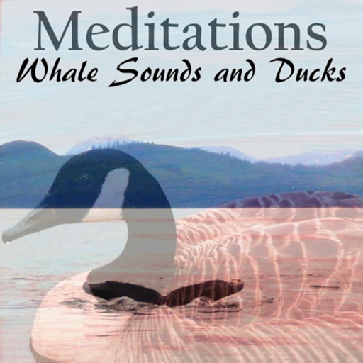 Meditations Whale Sounds Ducks icon