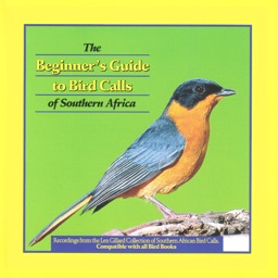 Beginner's Guide to Bird Calls