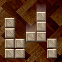 Wooden Block Puzzle Game ±