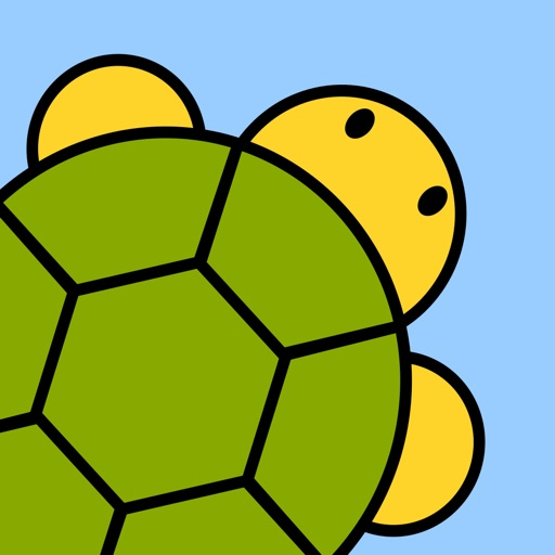Turtles: Learn to Code for Fun