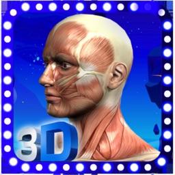 Female Anatomy 3D Visualizer