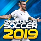 Dream League Soccer 2019 icon
