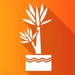 Cassava Plant Disease Identify