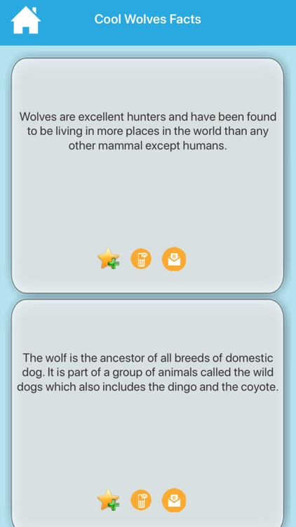 Cool & Amazing Animal Facts screenshot-4