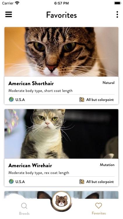 Cats Pedia: Breed identifier screenshot-8