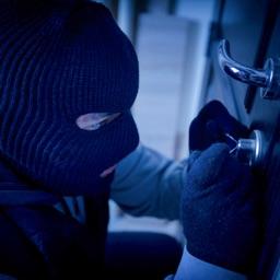 Pro Thief Simulator Robbery 3D