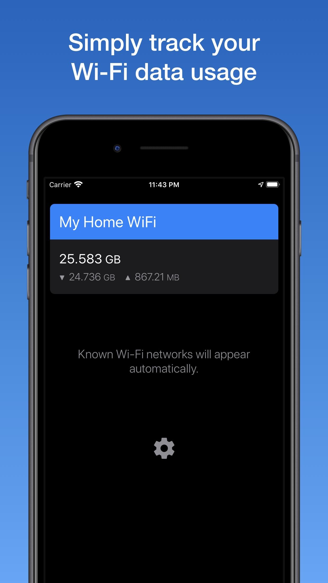 Screenshot do app WifiMan from DataMan