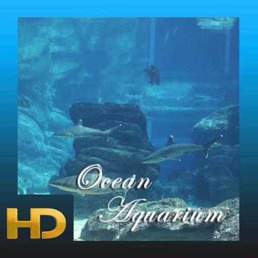 Ocean Aquarium HD