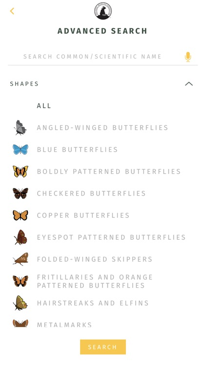 NWF Guide to Butterflies screenshot-6