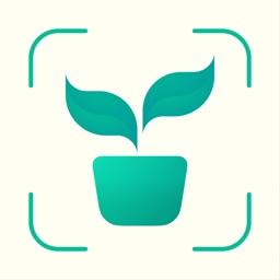 Carl: Plant Identification