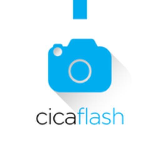 CicaFlash