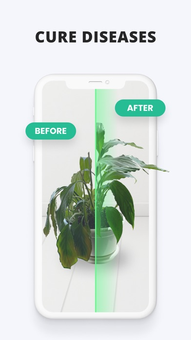 PlantIn: Plant Identifier Screenshot