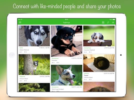 iKnow Dogs 2 PROのおすすめ画像5