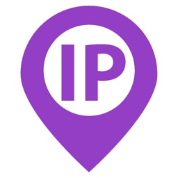 IP & Domain Info Tool
