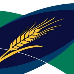 MyCrop Barley